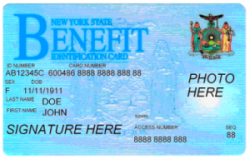 How To Qualify For Food Stamps Nyc