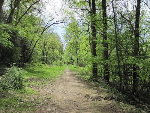 Croton trail. Photo by ScubaBear68.