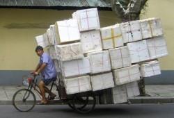 bike hauling