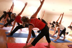 Williamsburg's secret free yoga classes, revealed!