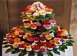 A caterer's money-saving wedding tips