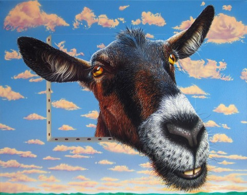 Craigslist freebie of the day: 17 paintings of a goat