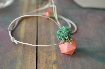25 gifts under $25, No. 15: Show off your plants
