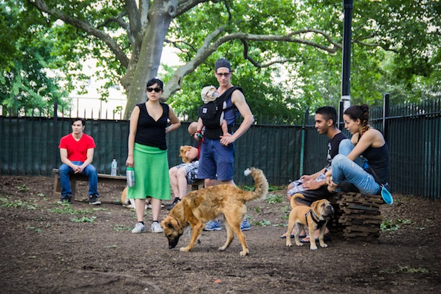 mccarren park dog run