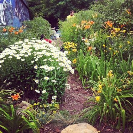 Flowers at Roger That Garden last month. (via Tumblr)
