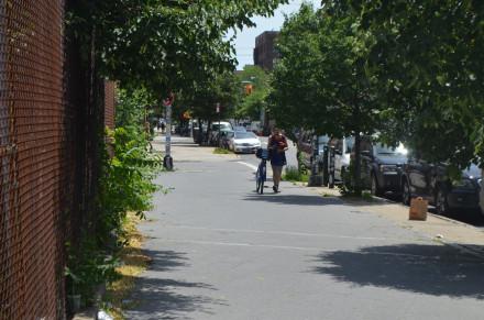 Walk it on the sidewalk, or Dorothy Rabinowitz wins. Photo by Mary Dorn