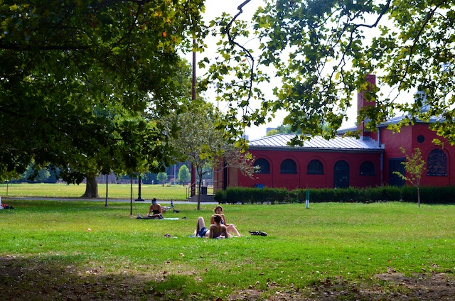 Why, McCarren Park is downright bucolic. Photo by Mary Dorn