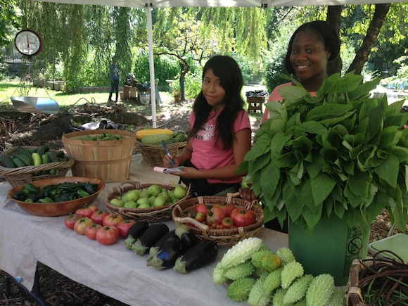 The Brooklyn Museum is getting a weekly farm stand on Thursdays