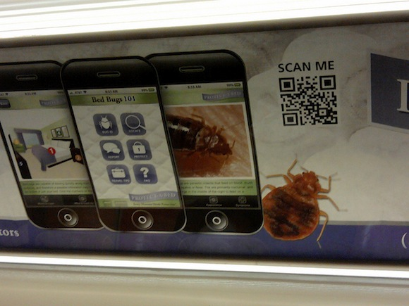 Bedbugs officially take over subway, spotted 'feeding' on 7 train
