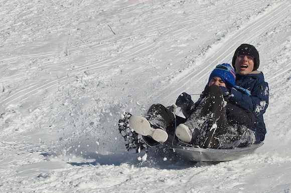 It's all downhill from here: Brooklyn's 5 best sledding spots