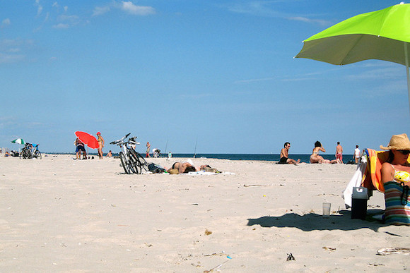 Help make Fort Tilden fresh and clean for next summer this weekend