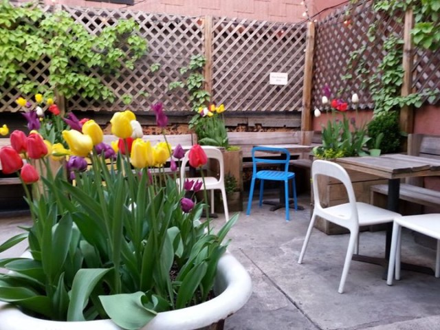 A tub of tulips is just one of the wonders if Quarter Bar's backyard. Via Facebook.