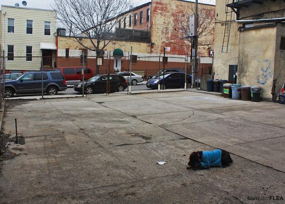 Yesterday, an empty lot. This weekend, a brimming flea market. via BarN'Yard Flea.