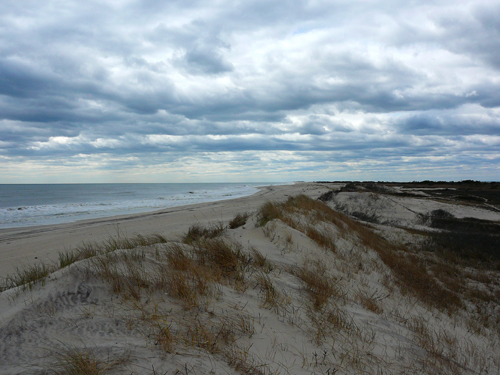 fire island wilderness