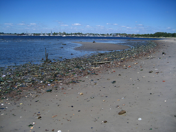 Volunteer today to help the city count garbage on the beach