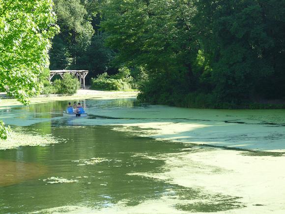 faraway swamp lagoon, or city-curated park? via Flickr user Scott Keddy