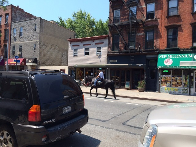 The Franklin Avenue bike lane is no place for you and your horse