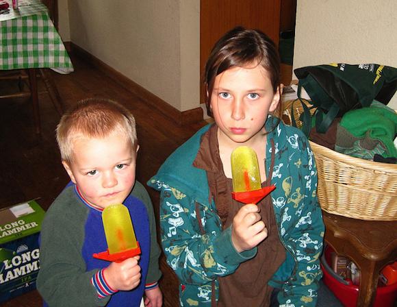Kids love 'em, parents get rid of leftover pickle juice with 'em. via flickr user amanda