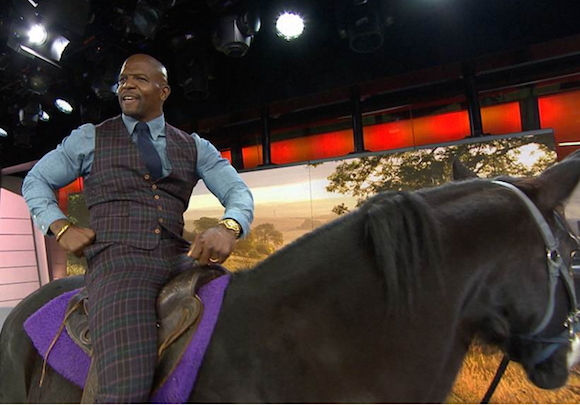 The mysterious Franklin Avenue horse isn't just blog famous, now it knows Terry Crews
