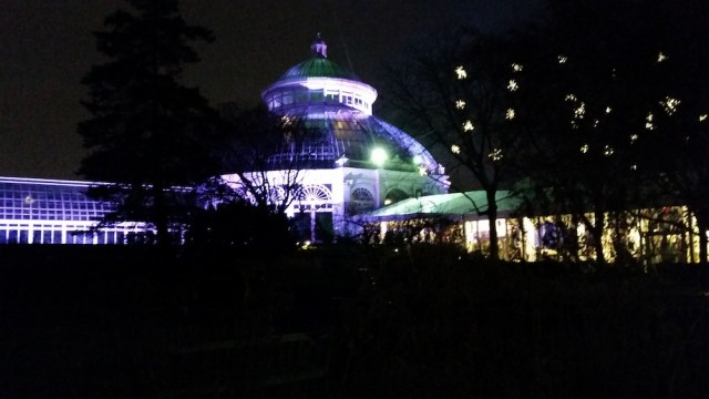 New York Botanic Garden's festive conservatory (pic by me)