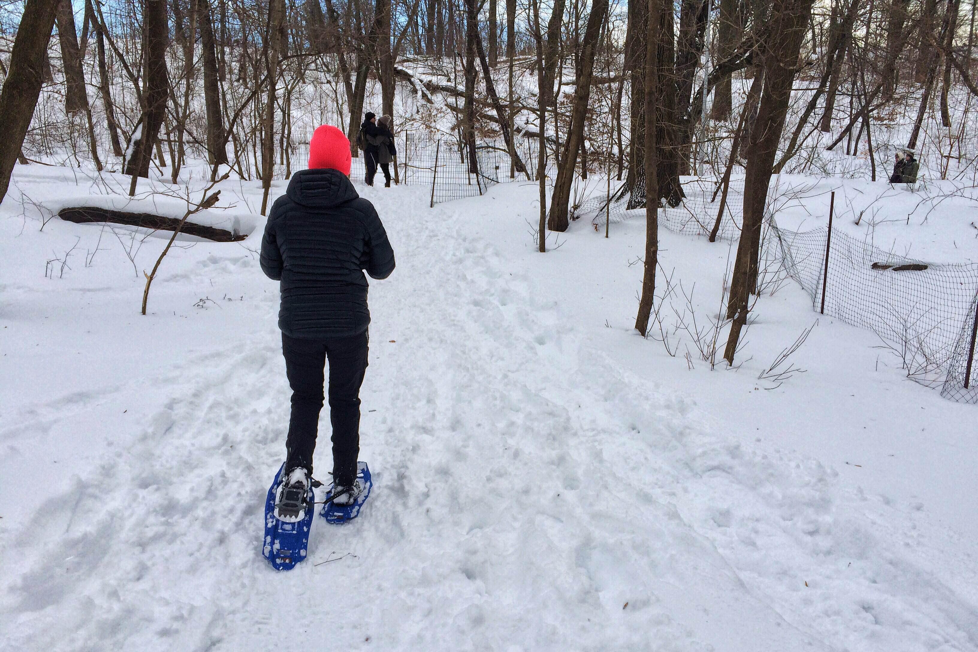 Snow Shoe Prospect Park