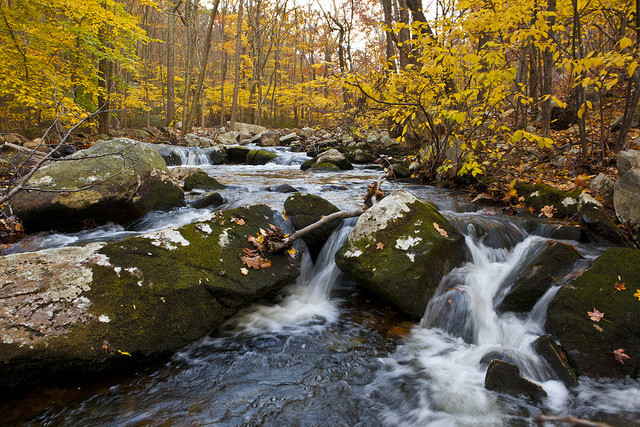This creek in Harriman looks nice, but keep in mind it's gonna be too cold to jump in right now. via Flickr user Anthony Quintano
