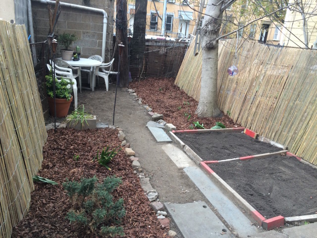 What can I do with my garbage backyard? Tips on cleaning it and getting it ready for gardening
