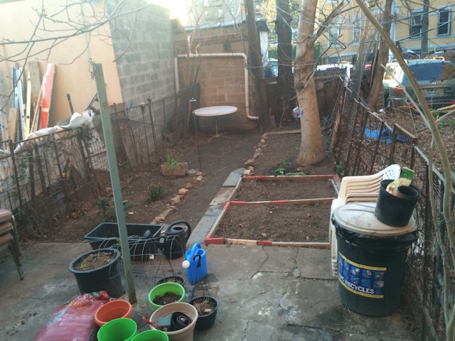 Yes There Is Hope For Gardening In Your Garbage Backyard