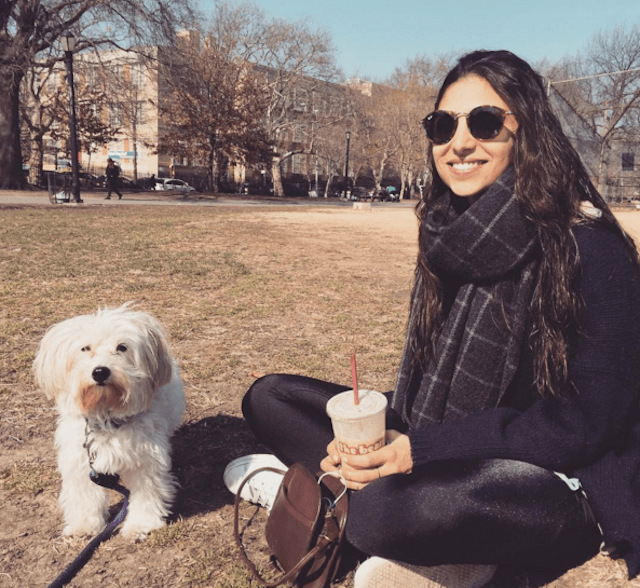 Stay Lassie: 5 ways to hang out with dogs in Brooklyn (if you can't actually own one)