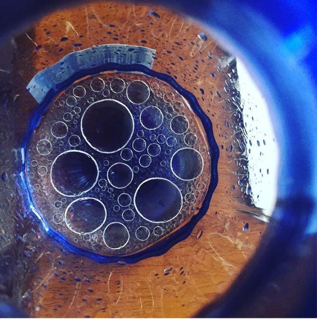 First attempt at DIY bug spray. Photo by Hope Morawa/Brokelyn.