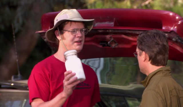 Dwight Schrute brings his own homemade, deet-infused bug repellent to the company picnic.
