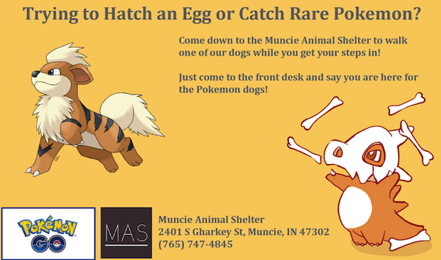 The viral ad recruiting Pokemon Go players to walk shelter dogs. Photo via Muncie Animal Shelter on Facebook