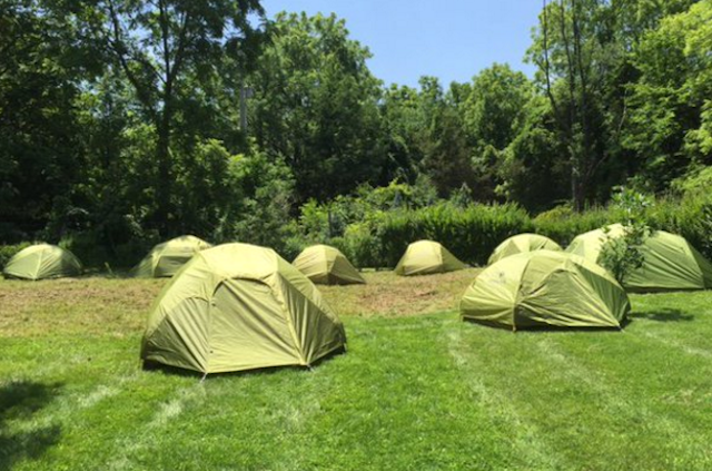 Blend in with nature in one of these grass-green tent rentals from Traverse Outdoors. Image via Twitter