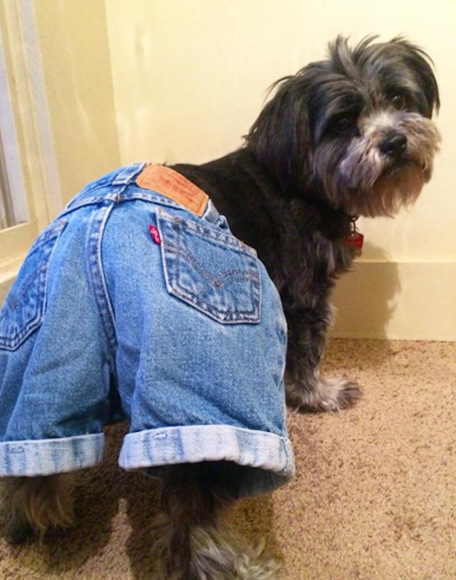 Mom shorts too! Photo via @alexandoso on Instagram.