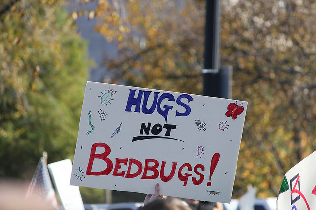 Having bed bugs can feel real lonely. Here's how to reach out to friends responsibly.  via flickr user Jen Myronuk