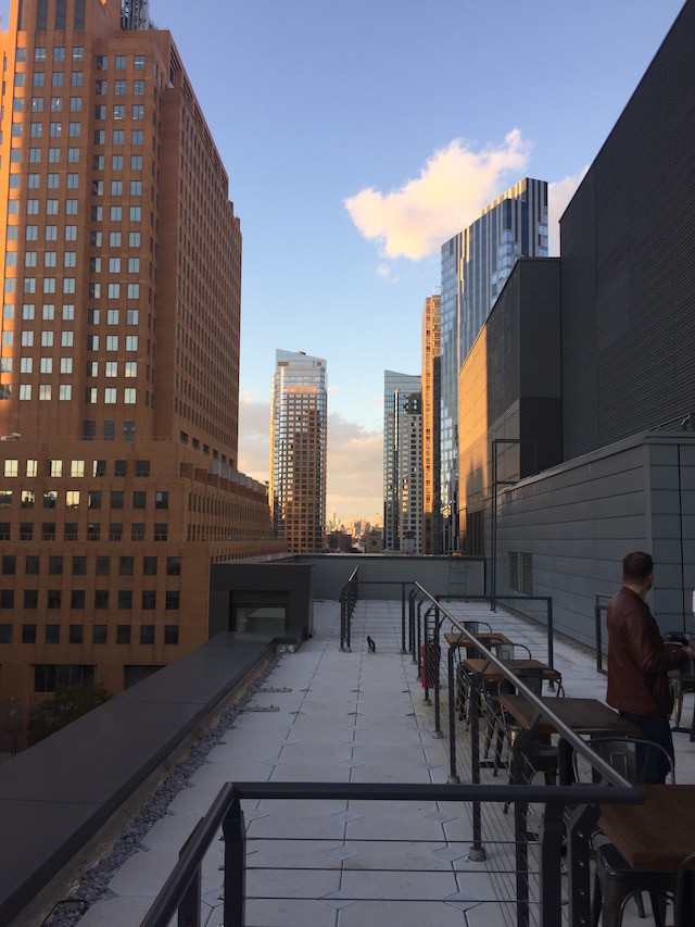 The view from the rooftop bar. Photo by Tim Donnelly/Brokelyn.