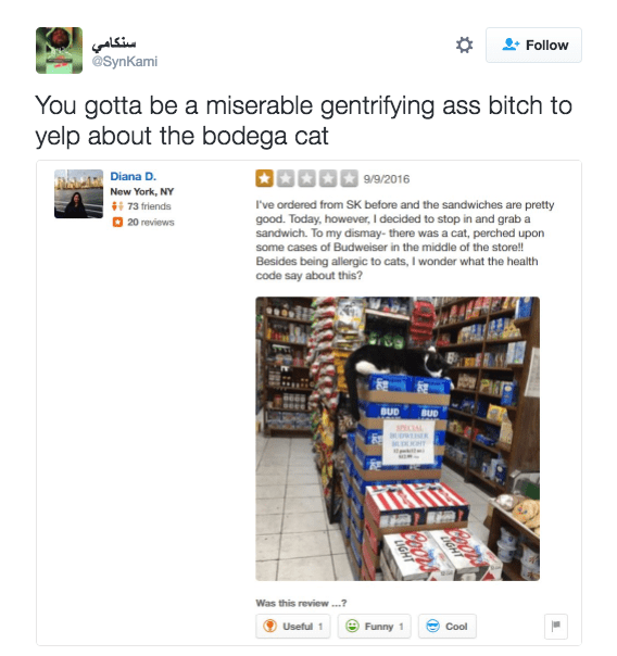 PSA: Don't narc out bodega cats on Yelp or you will be furiously mocked