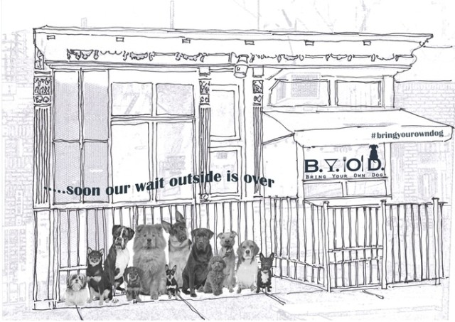 These women want to open a BYO dog cafe in Brooklyn, and you can help