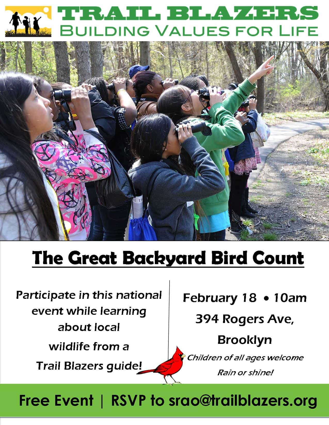 the great backyard bird count brokelyn