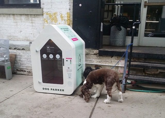 Get paid to park your dog in one of those bougie street crates