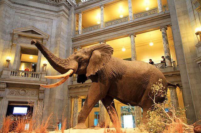 The Smithsonian. Photo via Wikipedia