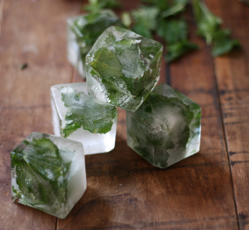 Summer Nights : Herbs for Cooling and Clearing