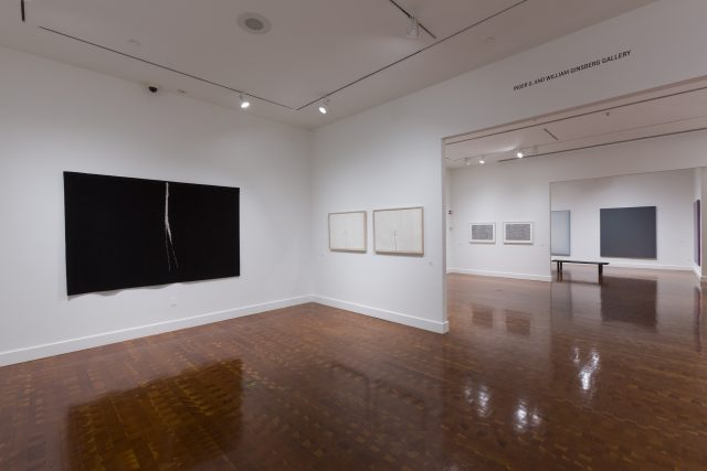 Light Lines Gallery Tour