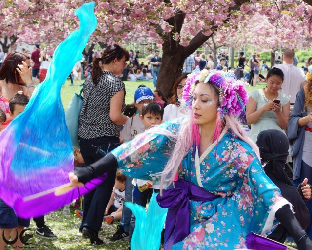 The 20 best cheap things to do this weekend, cherry blossom edition