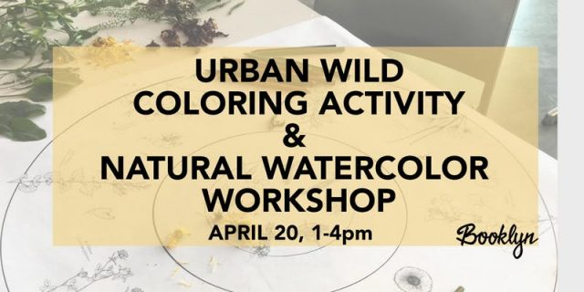 Earth Day Drop-In Nature Workshops