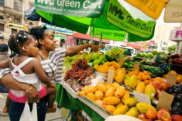 Eatin' Good in the 'Hood: The Link Between Socioeconomics and Access to Nutrition