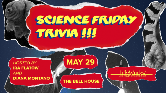Fifth Annual Science Friday Trivia Night!