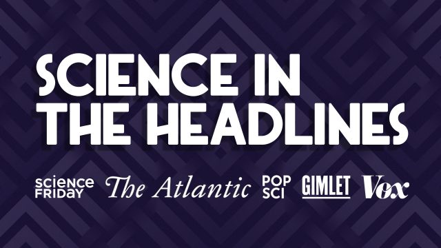 Science In The Headlines: 2019's Discoveries, Disappointments, And Downright Weirdness